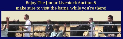 Locally Raised Beef, Poultry, Pork & MORE from the Fallbrook FFA and 4H!